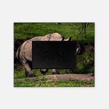(3) Rhino on Hill Picture Frame
