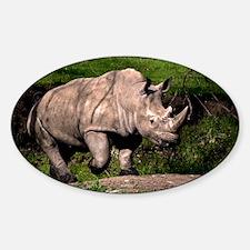 (3) Rhino on Hill Sticker (Oval)