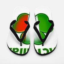 McTalian both Flip Flops