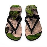 Rhinoceros Flip Flops