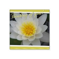 """2-Water Lily Square Sticker 3"""" x 3"""""""