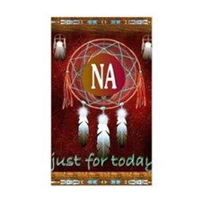 2-NA INDIAN Decal