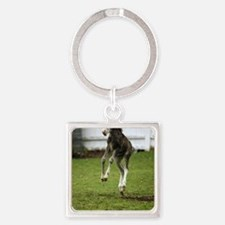 funny_colt Square Keychain