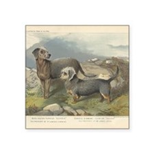 "Terriers antique print Square Sticker 3"" x 3"""