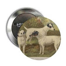 "Fox Terriers antique print 2.25"" Button"