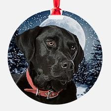 WinterLabOrn Ornament