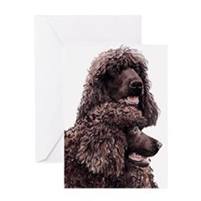 Irish Water Spaniel 2 Greeting Card