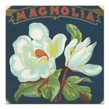 "Magnolia antique cigar l Square Car Magnet 3"" x 3"""
