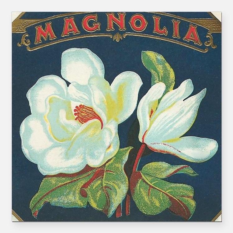 """Magnolia antique cigar l Square Car Magnet 3"""" x 3"""""""