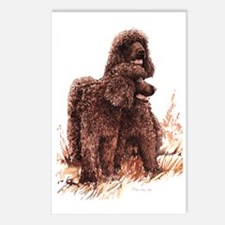 Irish Water Spaniel fixed Postcards (Package of 8)