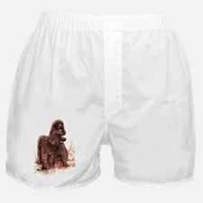 Irish Water Spaniel fixed Boxer Shorts