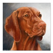 "Vizsla Square Car Magnet 3"" x 3"""