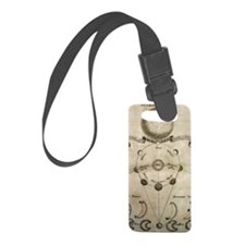 Ancient Moon Phases Luggage Tag