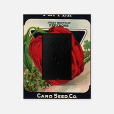 Red Bell Pepper antique seed packet Picture Frame