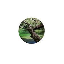 Tarawera-River--branch-7-2-10-6840-aw Mini Button