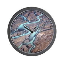 Godley-River-AS-trip-21-5-09-5296-aw Wall Clock