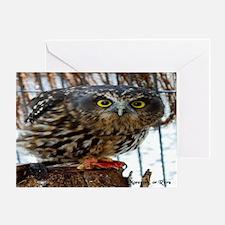 3335-ruru-stare-aw-2700x211 Greeting Card