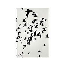 Birds Rectangle Magnet