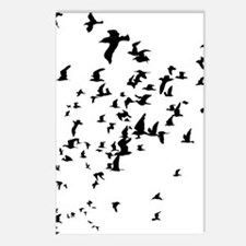 Birds Postcards (Package of 8)