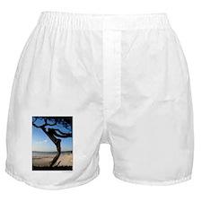 9x12framedprint_Figure Study Boxer Shorts
