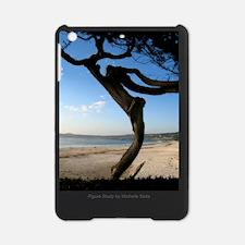 2-4x6postcard_Figure Study copy iPad Mini Case