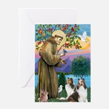 St Francis (V2-W) - Two Shelties Greeting Card