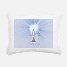 2010WalkInLight Rectangular Canvas Pillow