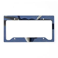 AB63 C-MNpst License Plate Holder