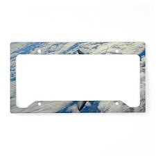 AB62 C-Lpst License Plate Holder