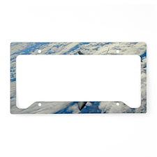 AB62 C-MNpst License Plate Holder