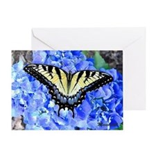 Eastern Yellow Tiger Swallowtail But Greeting Card