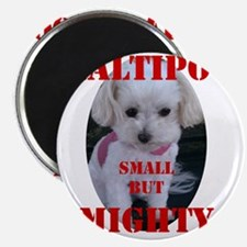 maltipoo_small_but_mighty copy Magnet