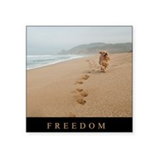 "Poster_Freedom2 Square Sticker 3"" x 3"""
