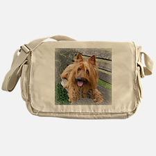 aussiee terrier Messenger Bag