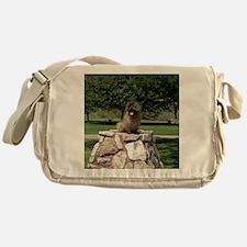 CairnCairn Messenger Bag