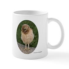 3-PEM_20090607_6134-oval-pair Mug