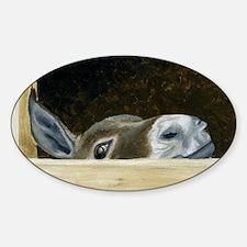 Iwannaseemousepad Sticker (Oval)