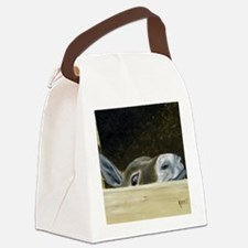 Iwannaseemousepad Canvas Lunch Bag