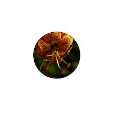 LILYOVALORNAMENT Mini Button