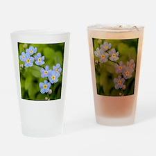 DSCN3394a Drinking Glass