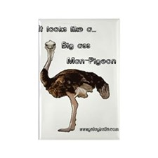 ostrich002 Rectangle Magnet