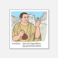 "caecilius_col Square Sticker 3"" x 3"""
