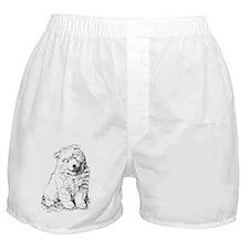 Samoyed Puppy Boxer Shorts