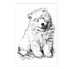 Samoyed Puppy Postcards (Package of 8)