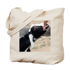 Stretching Goat Tote Bag