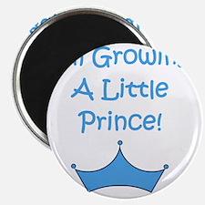 imgrowingalittleprince_crown2 Magnet