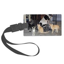 DogsDrool Luggage Tag