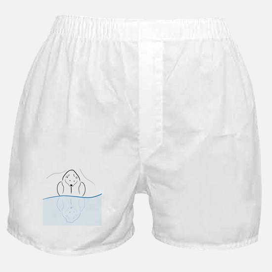 Polar Bear Reflection Boxer Shorts