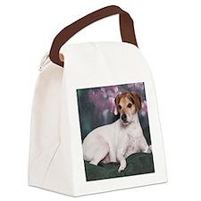 IMG_7426 MPad Canvas Lunch Bag