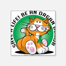 "Organ-Donor-Cat Square Sticker 3"" x 3"""